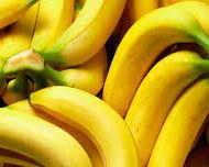 Hollandis asuva Wageningen University uurijate väitel ähvardab mullastikus elutsev tappev seen banaane väljasuremisohuga. Tige seen, mis ründab taime vaskulaarset süsteemi, takistades sel mullastikust vee kättesaamist, on saatuslikuks saanud juba banaaniistandustele nii Taiwanis kui Malaisias. Ekspertide arvates on probleem vältimatult jõudmas ka Ladina-Ameerikasse, kust enamik meie poodides olevatest banaanidest pärit on. Spetsiiflisemalt on tegu seenorganismiga, mis […]