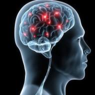 Parkinsoni ja teistesse neurodegeneratiivsetesse haigustesse haigestub järjest rohkeminimesi.Eesti statistika kohta ei oska küll öelda, kuid Ameerika Ühendriikides saab Parkinsoni tõve diagnoosi igal aastal ei rohkem ega vähem kui 60000 inimest. Praeguseks on Parkinsoni põdejaid seal riigis kokku ligi3miljonit. Parkinsoni tõve näol on tegu aju progressiivse degeneratsiooni ehk pidevalt tugevneva taandarenguga. Kahjuks tegelevad olemasolevad ravimid vaid […]